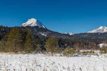 hiking in Seefeld in Tyrol on a sunny winter day