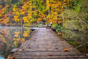 Please sit, enjoy.  A wood bench sits on a pier in a serene portion of a lake surrounded by the beautiful colorful fall foliage.