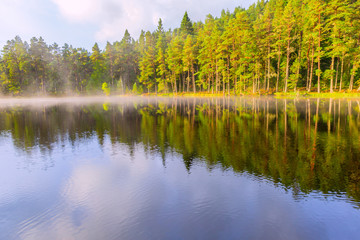 Printed kitchen splashbacks Lake Beautiful landscape scene with pine forest reflected in calm lake hazy water in the morning