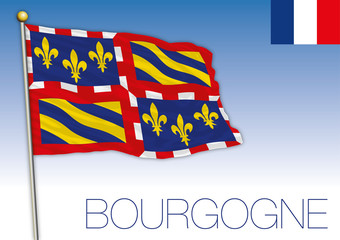 Bourgogne regional flag, France, vector illustration