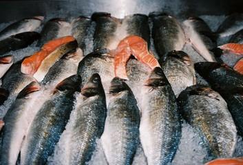 Pescado, Fish