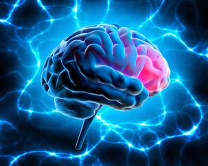 Gehirn mit elektrischer Energie