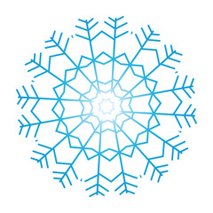 Snowflake ornate