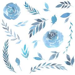 Floral nature elements plants blue watercolor