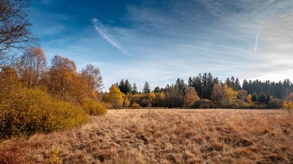 Schwarzes Moor - Rhön