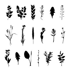Grass and flowers silhouette set isolated on white background vector