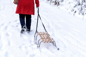 Schlittenfahren im Winter