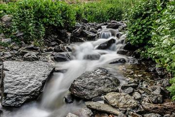 Beautiful Lush Mountain Stream in the Colorado Rocky Mountains