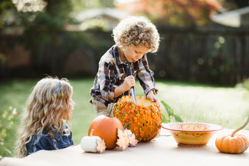 Family carving pumpkins together