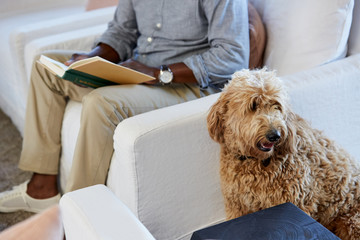 Senior man relaxing in living room while reading a book with his dog next to him