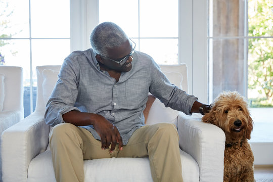 African American senior man with his pet dog in the living room