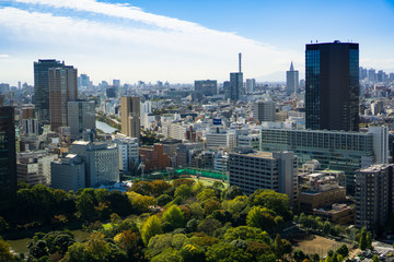 Tokyo cityscape on a sunny day