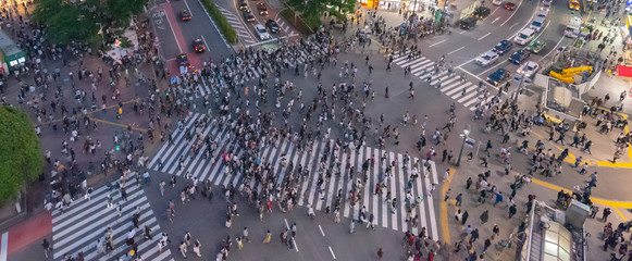 Pedestrians crosswalk at Shibuya district in Tokyo, Japan. Shibuya Crossing is one of the busiest crosswalks in the world.