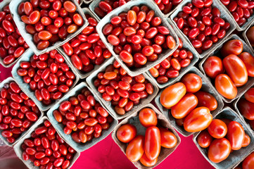 Grape, plum, and regular red tomatoes  for sale at a weekend farmers market in St. Pete Beach, Florida.