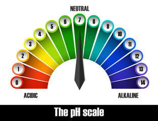 The ph scale chart