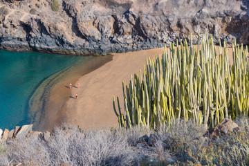 Incredibly beautiful Abama Beach.Tenerife. Canary Islands..Spain