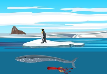 Arctic nature concept scene,  walrus on the ice, penguin, whale among the polar icebergs.