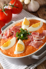 Fresh Spanish Antequera Porra vegetable soup with boiled eggs and ham close-up in a pan. vertical