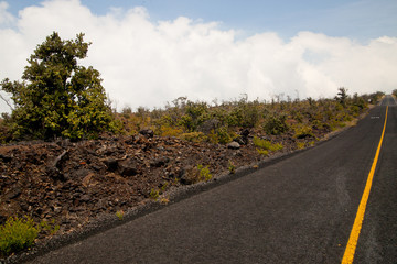 Road Through Old Hawaiian Lava Field