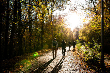 People walking on a path in the forest near the city during sunset on autumn