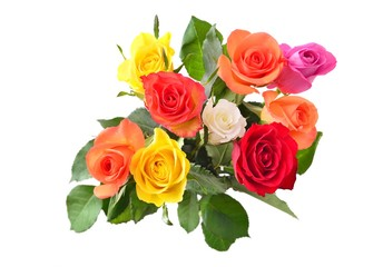 Bouquet of roses, isolated on white background.
