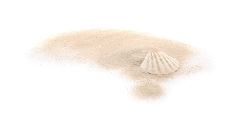 Seashell and sand on white background