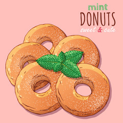 Group of vector colorful illustrations on the sweets theme; set of different kinds of donuts decorated with powdered sugar and mint. Realistic isolated objects for your design.
