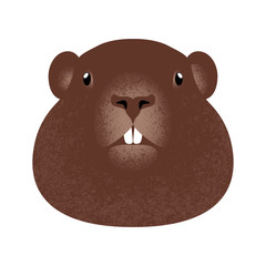 Groundhog Day. Concept National holiday in the USA and Canada. Face of the animal groundhog. White background.