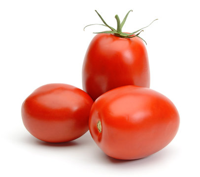 San marzano plum tomatoes isolated on white background