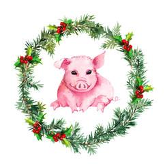 Christmas card - fir twigs, mistletoe, lovely pig. Watercolor