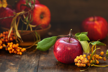 Autumn harvest red apples fruits and sea buckthorn berry on a dark wooden table background