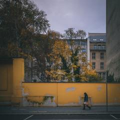 Gelbe Mauer