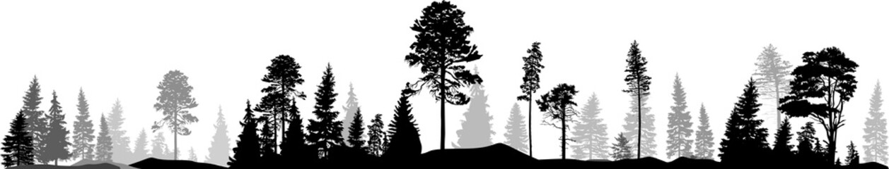 black and grey forest panorama on white