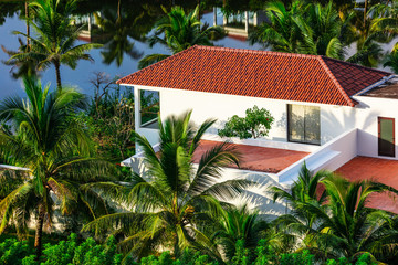 white building among the palm trees in tropics