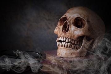 Human skull on old books