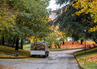 a maintenance truck loaded with brushwood in a park in the autumn period