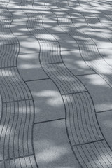 Wall Mural - the shadow of the leaves on the road paved with tiles
