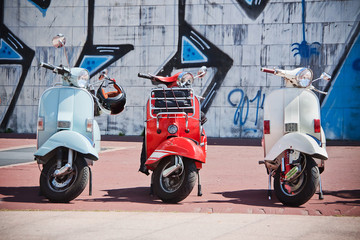 Photo Blinds Scooter scooter motorino