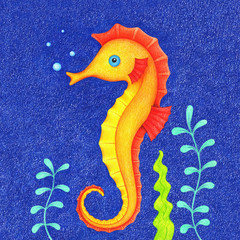 hand drawn picture of swimming orange seahorse under water by the color pencils. Illustration of sea ​​life for kids