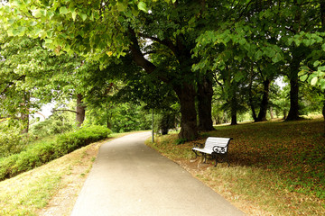 bench in a park under an oak tree. toila estonia, oru park