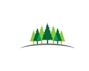 Pine symbol illustration