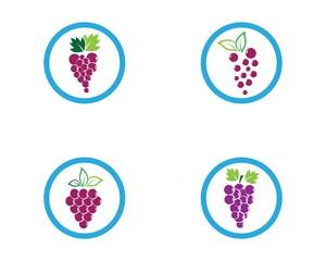 Grape logo template vector icon illustration design