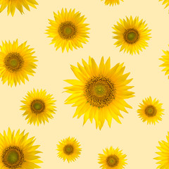 Seamless pattern with big bright sunflowers and dots on yellow background.