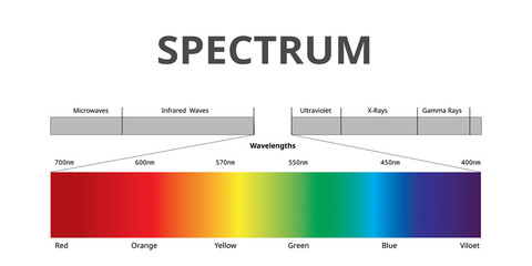Visible Spectrum color, Electromagnetic Spectrum that Visible to the human eye, Sunlight color, Vector