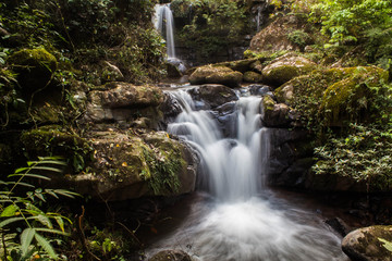 Water of the stream in the natural, Beautiful waterfall in forest.