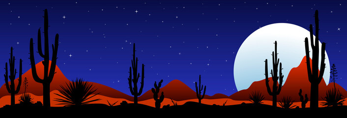 Moonlit night in the mexican desert