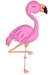 a vector of a cute pink flamingo bird