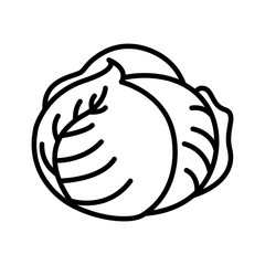 Vegetable collection - cabbage. Line icon of whole cabbage head. Vector Illustration