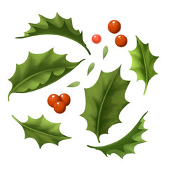 Christmas and new year Illustration about green holly branch with red berry. Decorative set of holiday tree isolated on white background