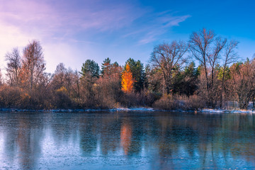 Winter landscape - forest lake with new thin ice. Trees are reflected in the water covered with new ice.